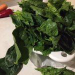 Spanac proaspăt pentru ciorbă de spanac